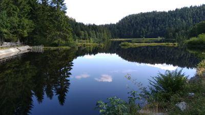 le magnifique lac de Lispach, une tourbière joliment aménagée (tour du lac en 3 km) sur la route entre Gérardmer et La Bresse (Vosges)